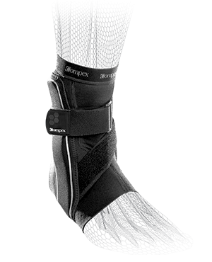 ankle-bio